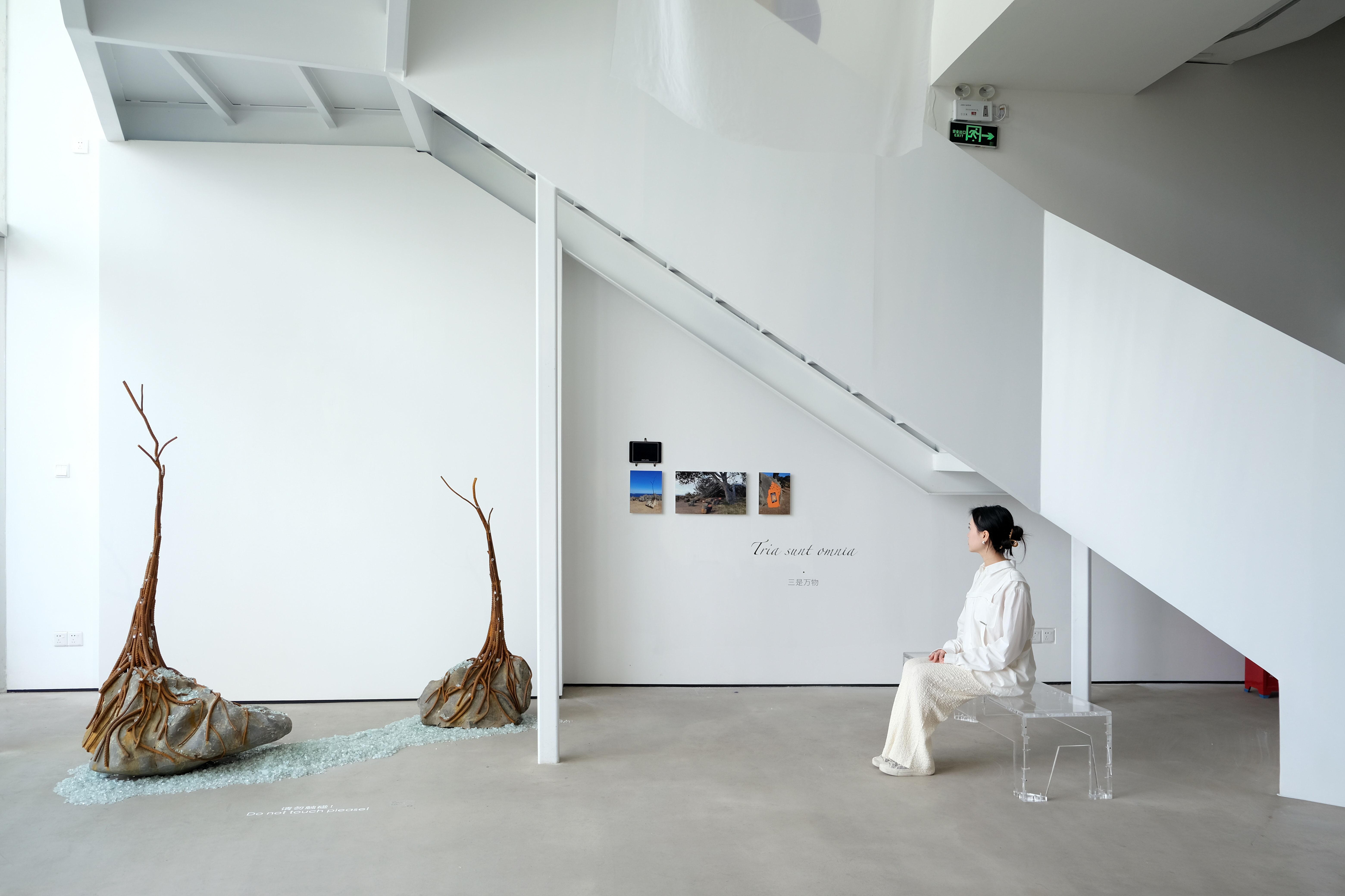 'Silicon Garden' installation W. ONE SPACE Gallery Schenzhen China.