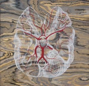 In the Top paddock: Brain Waves