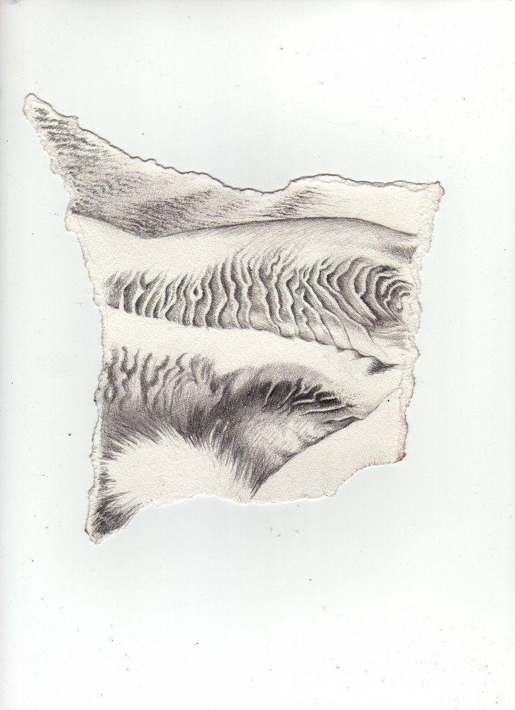 Drop the Dust: Diatomic Fragment