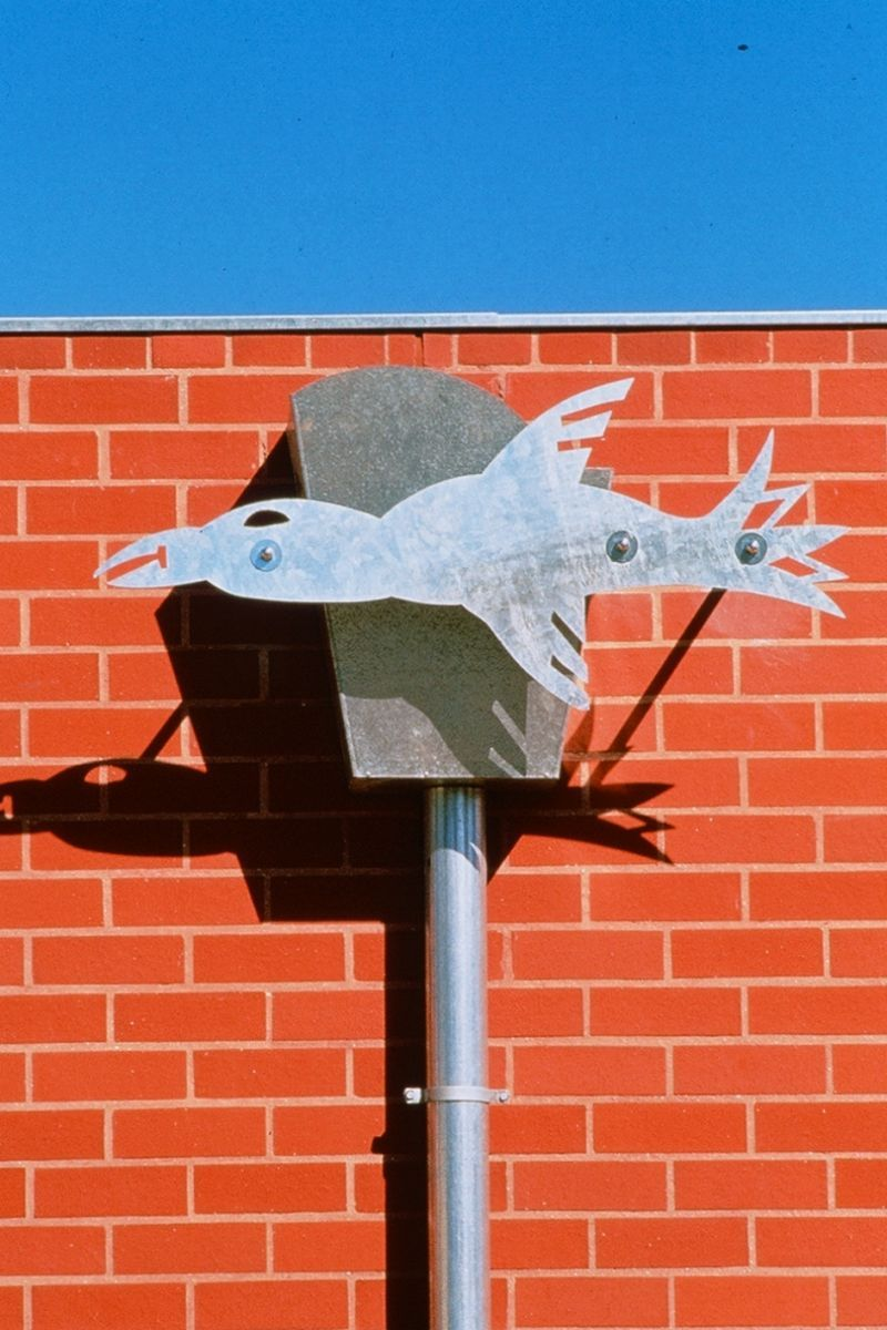 Swallowcliffe Schools: Wild-life Downpipe