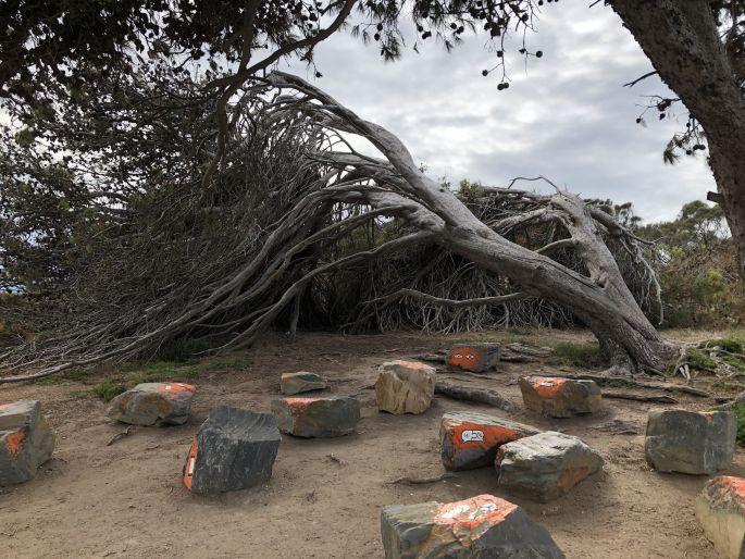 Sculpture Encounters, Granite Island, SA 2016 -